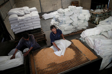 Men work on the only operative production line at a food packaging plant in Valencia