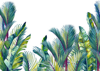 Tropical palm trees and banana leaves. Isolated watercolor background. Wall mural