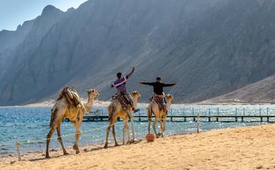 Wall Murals Algeria two egyptian boys riding a camel