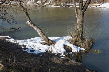 Remains of snow on the bank of a small river with trunks of old trees.