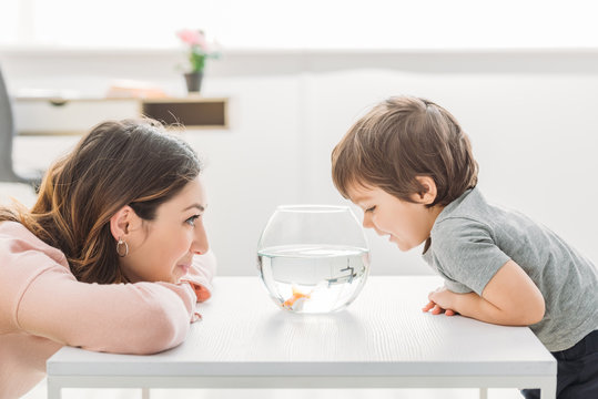 cheerful mother and adorable son looking at fish bowl at home