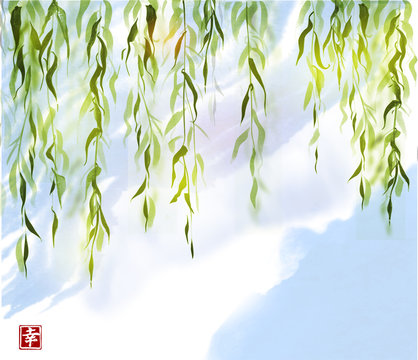 Green willow tree on blue sky background. Traditional Japanese ink wash painting sumi-e. Sign - eternity.