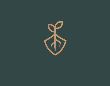 Abstract logo icon plant roots and shield nature conservation