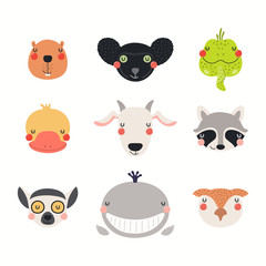 Spoed Fotobehang Illustraties Big set of cute funny animals faces. Isolated objects on white background. Hand drawn vector illustration. Scandinavian style flat design. Concept for children print.