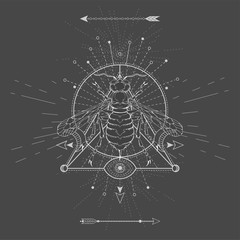Vector illustration with hand drawn Wasp and Sacred geometric symbol on black background. Abstract mystic sign.