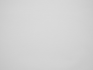light grey background. with no detail. visible structure and texture of the paper Wall mural