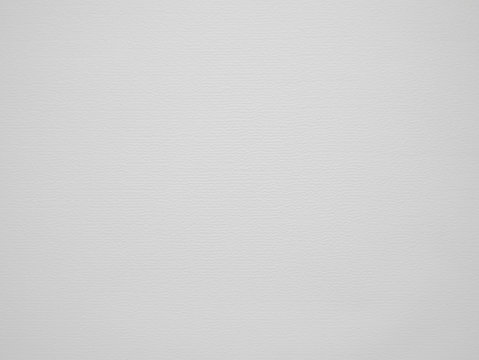 light grey background. with no detail. visible structure and texture of the paper