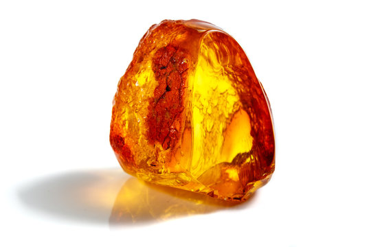 Macro stone mineral amber with insects, flies and beetles on a white background close up