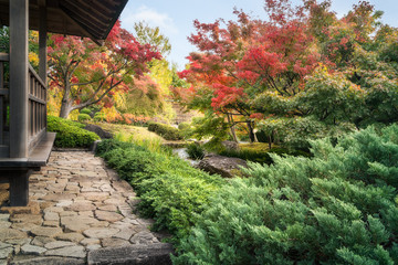 Spectacular autumn foliage and green vegetation along a small creek at the Chinese style garden in Koko-en Japanese Gardens located next to the famous Himeji Castle in Japan.
