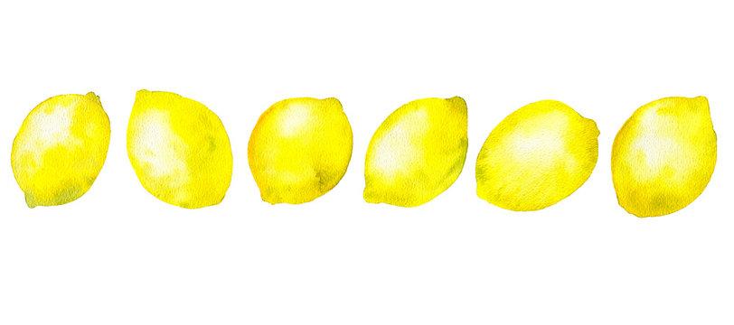 watercolor drawing lemons