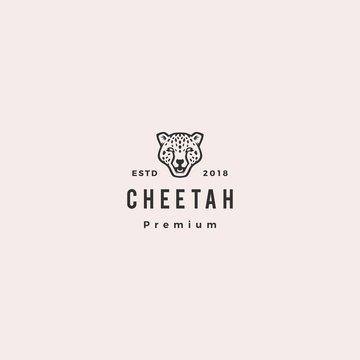 panther cheetah head logo vector icon illustration