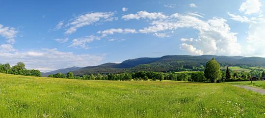Typische Landschaft im Bayerischen Wald, Bayern, Deutschland Fotoväggar