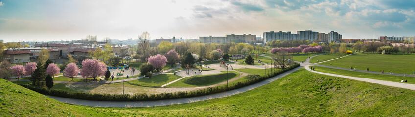 Wiosna w mieście Opole wiosna w parku