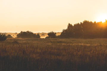 sunrise over a misty meadow in summer morning