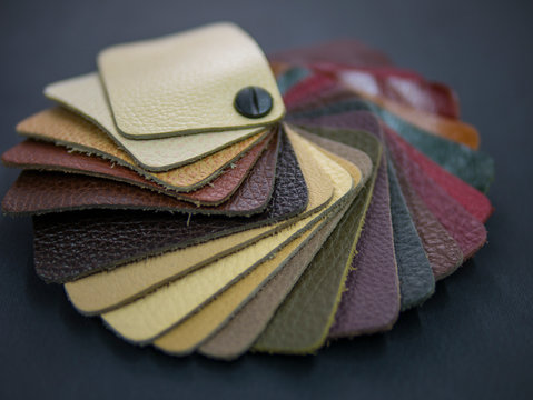 fan catalog with colored leather samples