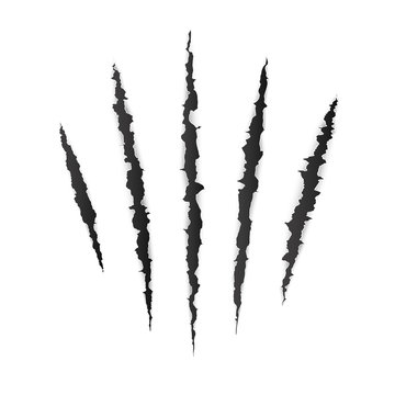 Animal claw scratches. Wild animal claws scratch texture. Vector illustration isolated on white background
