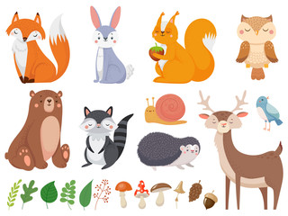 Estores personalizados crianças com sua foto Cute woodland animals. Wild animal, forest flora and fauna elements isolated cartoon vector illustration set