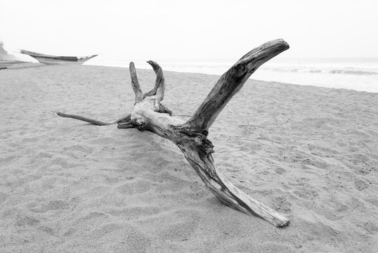 Selective focus black and white image of a piece of wooden drift wood on a sandy beach with a wooden fishing boat in the background