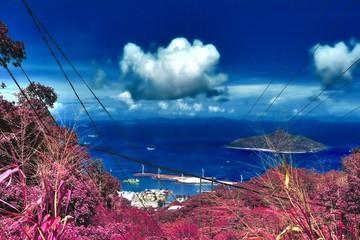 Poster Crimson Fantasy infrared shots of purple landscapes on the Seychelles islands