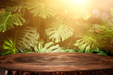 wooden table in front of tropical green Monstera leaves floral background. for product display and presentation. Wall mural