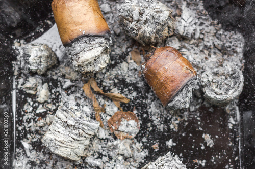 Expensive Cuban cigar  Cigarette butts in an ashtray  Male