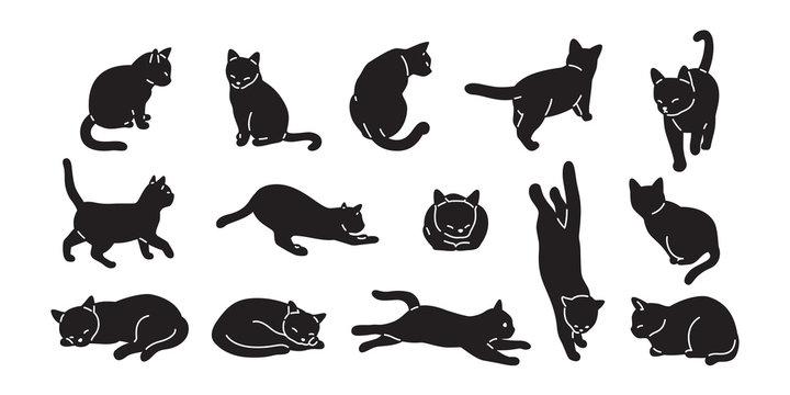 cat vector kitten icon logo cartoon character illustration doodle black