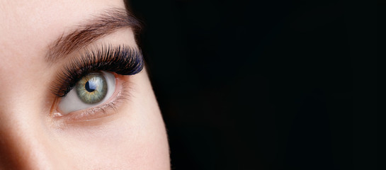 Close up view of beautiful green female eye with long eyelashes and perfect trendy eyebrows on dark background. Eyelash extension procedure.