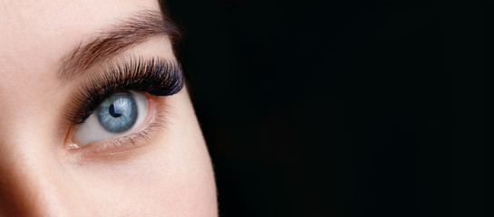Close up view of beautiful blue female eye with long eyelashes and perfect trendy eyebrows on dark background. Eyelash extension procedure. Fototapete