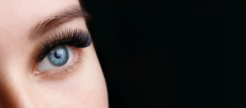Close up view of beautiful blue female eye with long eyelashes and perfect trendy eyebrows on dark background. Eyelash extension procedure.