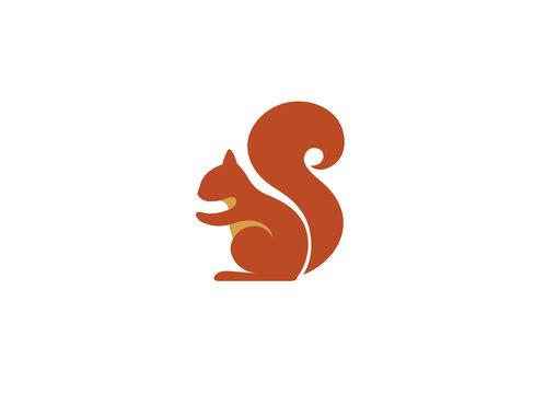 Creative Squirrel Animal Logo