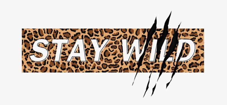 Stay Wild Fashion Slogan on leopard pattern background with claw scratch. Print for t shirt design with animal pattern and slogan. Vector illustration