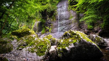 Arifat cascades Wall mural