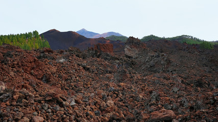 Volcanic soil of Chinyero Special Natural Reserve with Pico del Teide in the background, a lava territory with scarce vegetation and visible traces of the last eruption Tenerife, Canary Islands, Spain