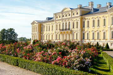 Beautiful roses in the park of the Rundale Palace in Latvia Fototapete