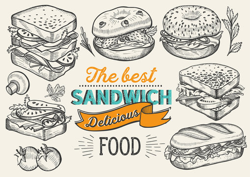 Sandwich illustration - bagel, snack, hamburger for restaurant