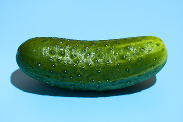 Ripe green cucumber on blue background. Healthy eating and dieting concept