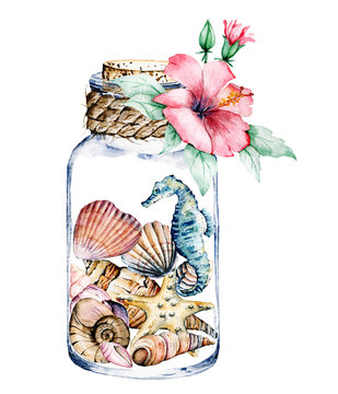 Seashells in glass jar, marine scenery. Watercolor flower, seahorse, starfish and other shells. Isolated on white background. Hand drawing.