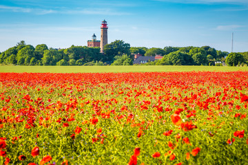 Wall Mural - Kap Arkona lighthouse with red poppy flowers in summer, Rügen, Ostsee, Germany