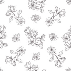 Seamless botanical line art pattern. Background with magnolia.
