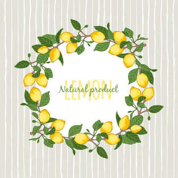 vector illustration decorative wreath of lemons,place for your lettering,  cartoon design