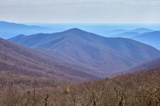 Scenic view of Terrapin Mountain and the surrounding landscape, located in the Blue Ridge mountains to the west of Lynchburg, Virginia...photographed during early spring along the Blue Ridge Parkway