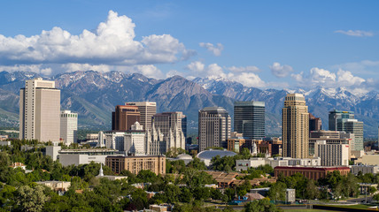 Salt Lake City Profile Wall mural