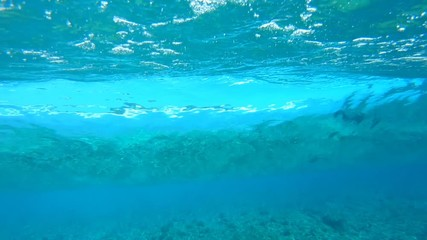 Fotomurales - Underwater view of the tropical crystal clear breaing wave working like a big lens and refracting the coast view