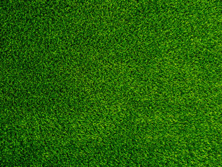 Green grass texture background, Green lawn, Backyard for background, Grass texture, Park lawn texture. Green lawn desktop picture.