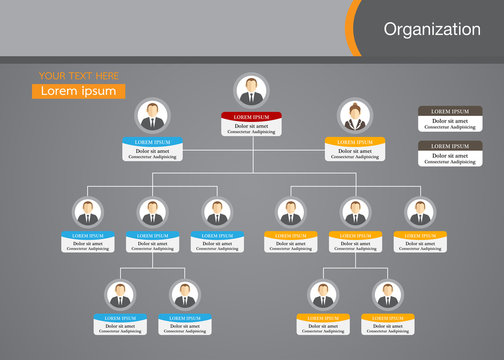 Organization Chart Infographics with People Icon and Abstract Line, Business Structure, Vector Illustration