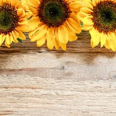 Fototapete - Sunflowers on wooden background.