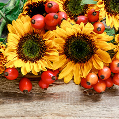 Fototapete - Sunflowers and wild rose twigs on wooden background.