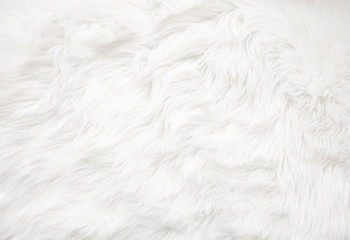 White fur texture Wall mural