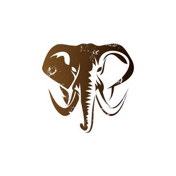 elephant logo designs concept, elephant face mascot logo template