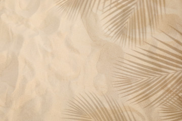 Selective focus of summer and holiday  backgrounds concepts with shadow of coconut leaf on clean sand beach Wall mural